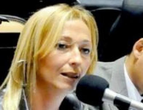El bloque Unión Celeste y Blanco desautorizó proyecto de diputado propio
